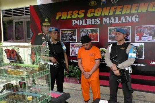 Polisi bongkar jaringan perdagangan satwa dilindungi