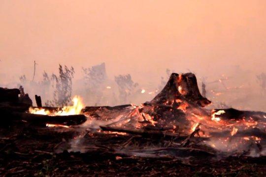 Karhutla meluas, tim gabungan di Aceh terus berjibaku padamkan api