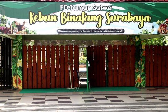 Cegah penyebaran corona, Kebun Binatang Surabaya diutup