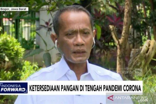 Kementan akui karantina wilayah hambat distribusi pangan ke Jakarta