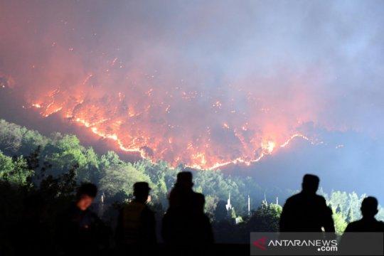 Kebakaran hutan di China telan korban jiwa