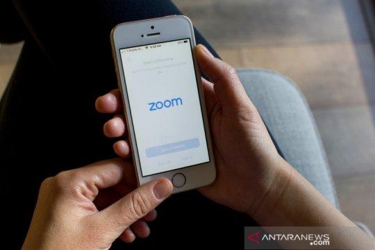 Zoom klarifikasi soal jumlah pengguna aktif harian, bukan 300 juta