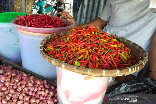 Harga cabai rawit di Sorong tembus Rp140.000 per Kg