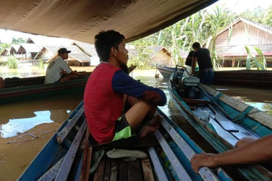 Ratusan rumah  di pedalaman Barito Utara terendam banjir