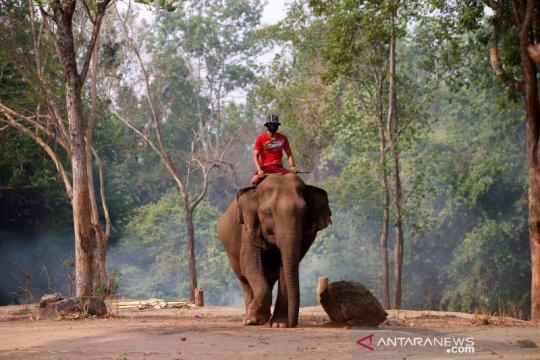 """Karena corona, Myanmar akan """"lockdown"""" di masa festival Thingyan"""