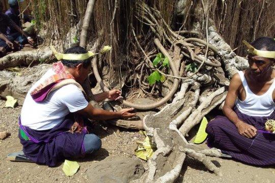 "Warga Witihama Flores Timur gelar ritual ""tolak bala"" cegah COVID-19"