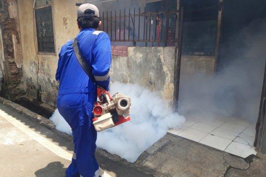 Jubir Pemerintah: Waspadai DB di tengah pandemi COVID-19