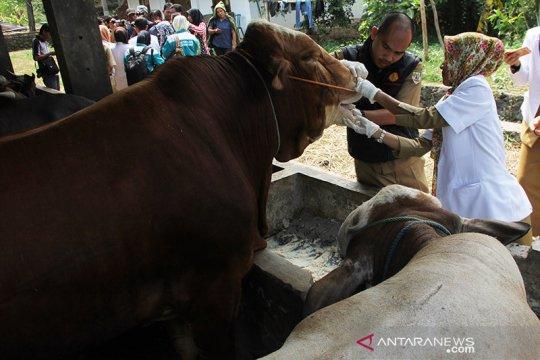 Pakar patologi minta masyarakat waspadai bahaya zoonosis