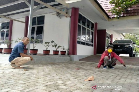 Warga berhamburan, Palu diguncang gempa bumi 5,1 magnitudo