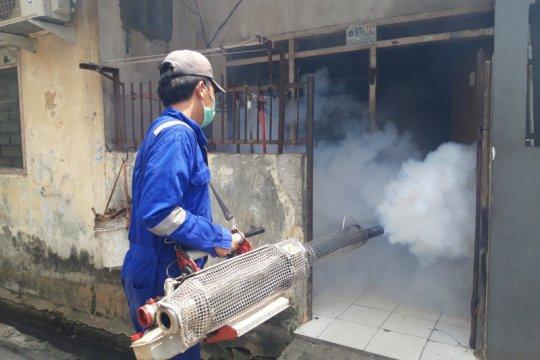Sudinkes Jakarta Pusat catat 212 kasus DBD hingga April 2020