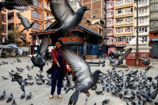 Nepal mulai laksanakan vaksinasi COVID-19 atas sumbangan India