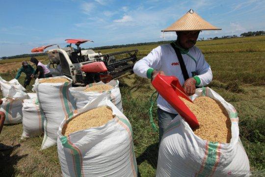 Heran harga beras naik, Presiden: Tolong lapangannya diperiksa betul