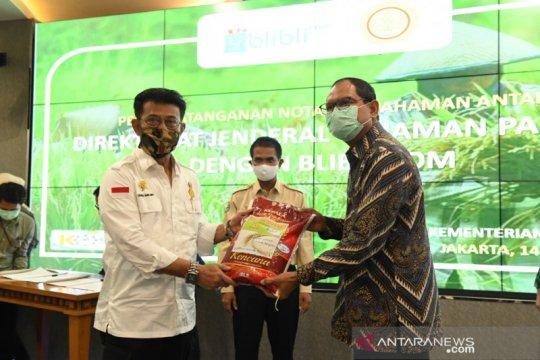 Kementan gandeng Blibli kerja sama pasarkan beras dengan penggilingan