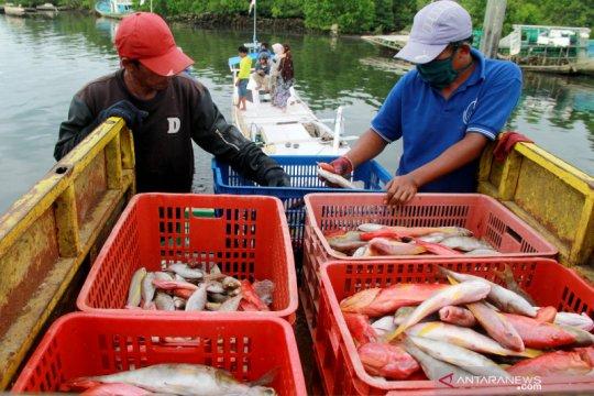 KKP nyatakan optimisme nelayan melaut di tengah COVID-19 masih tinggi
