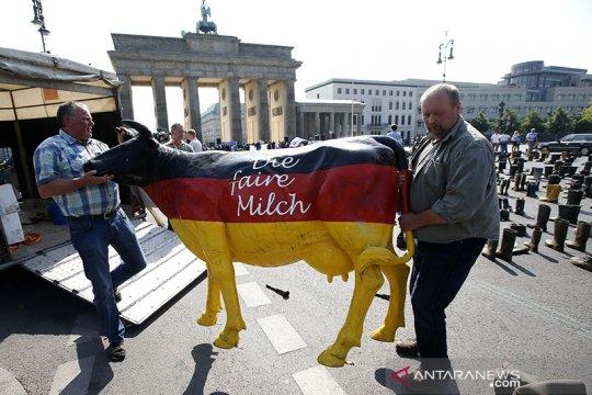 Jerman desak Uni Eropa bertindak dukung peternak sapi perah