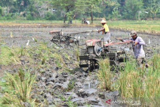 IPB-KRKP inisiasi gerakan bantu petani saat pandemi