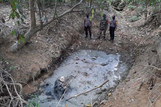 Gajah sumatra ditemukan jadi bangkai di Aceh Timur
