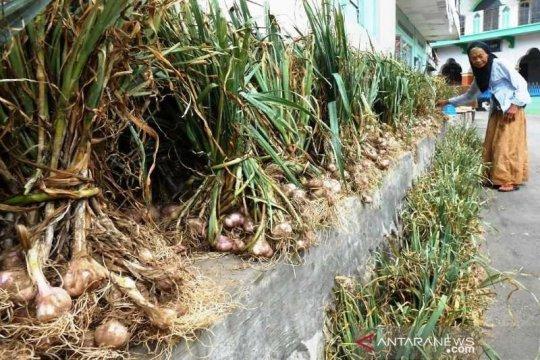 Pasokan impor bawang putih akhir April diharapkan atasi defisit
