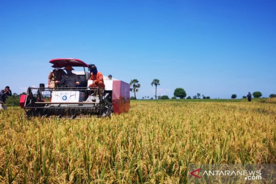 Mentan dorong petani manfaatkan KUR agar terhindar dari tengkulak