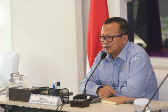 Anggaran KKP kembali dipotong, capai Rp1,8 triliun untuk atasi Corona