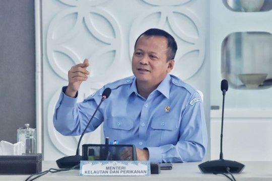 Menteri Edhy sebut pandemi bisa jadi peluang bagi pengusaha perikanan