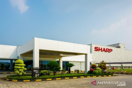 Sharp Indonesia catat penjualan tumbuh positif saat pandemi COVID-19