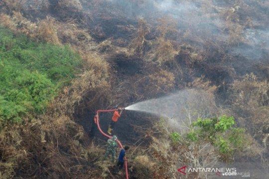 KLHK: PIPPIB untuk perbaikan tata kelola hutan dan lahan gambut