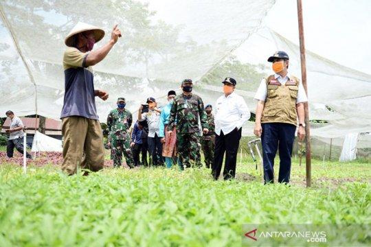 Gubernur Riau minta lahan kosong ditanami tanaman pangan saat wabah