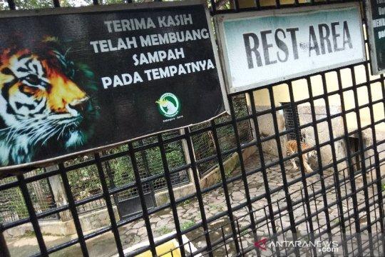 Taman Satwa di Garut kesulitan dana untuk kebutuhan pakan hewan
