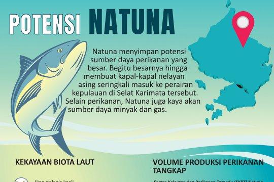 Potensi Natuna
