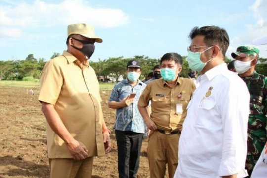 Mentan targetkan penambahan beras 900.000 ton dari cetak sawah baru