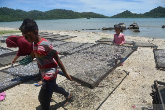 Menteri Edhy dorong nelayan manfaatkan pinjaman BLU berbunga rendah