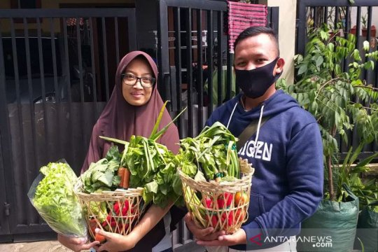 HIPMI dorong pengusaha muda berkecimpung di bisnis pertanian