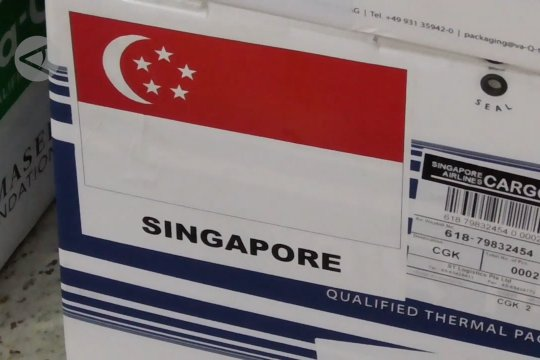 Batam-Singapura sinergi perangi COVID-19