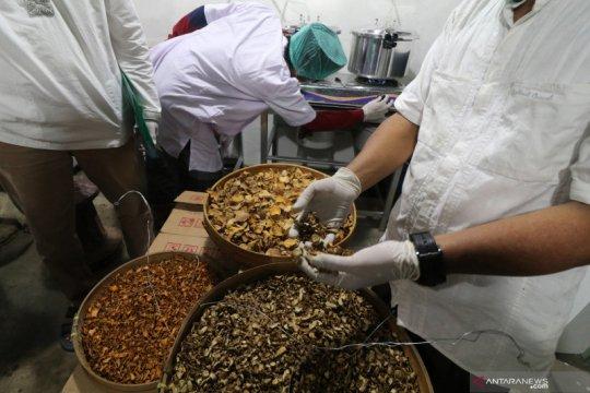 RI dinilai punya peluang bagus garap herbal yang mulai diminati dunia
