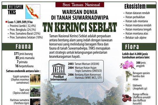 TN Kerinci Seblat, warisan dunia di tanah Suwarnadwipa