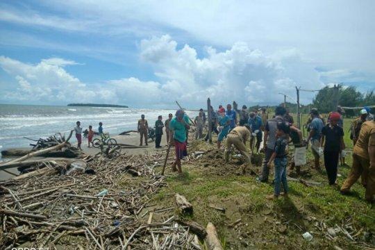 Pemkab Nias kubur bangkai babi yang berserakan di Pantai Tagaule