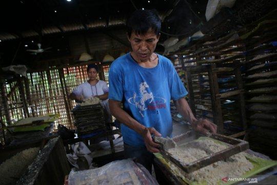 Pemerintah perlu prioritaskan UMKM dan pekerja informal berusaha lagi