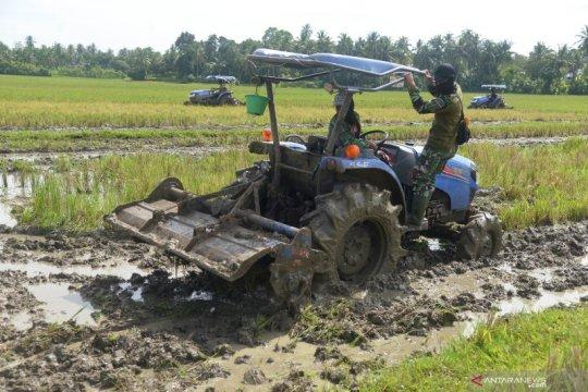 Manfaatkan sisa musim hujan, petani diminta percepat tanam padi tahap kedua
