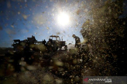Pekerja Palestina terluka oleh tentara Israel di dekat Jenin