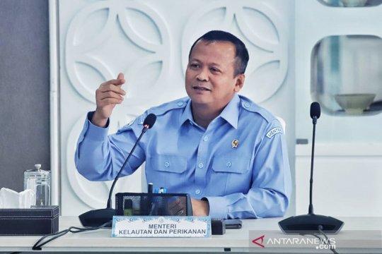KKP ajukan stimulus Rp1,24 triliun untuk penguatan nelayan