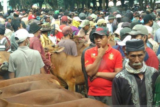 Akibat pedagang tak pakai masker, Pemkot Probolinggo tutup pasar sapi