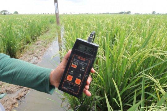 KTNA harapkan bioteknologi pertanian bisa segera diterapkan
