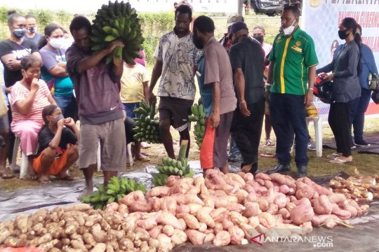 Pangan lokal Papua di tengah pandemi COVID-19