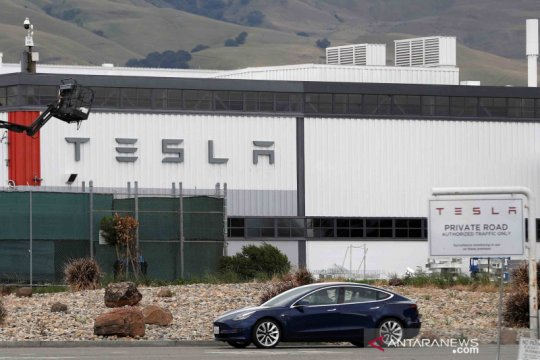 Tentang aturan pembatasan saat pandemi COVID-19, Tesla operasikan kembali pabriknya