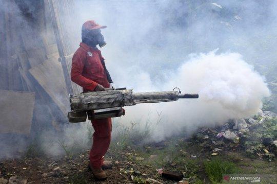 Banten siaga hadapi peningkatan kasus DBD