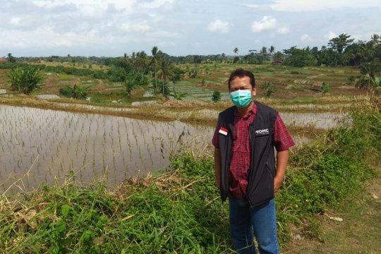 Dompet Dhuafa-Ok Oce kembangkan ketahanan pangan berbasis pesantren