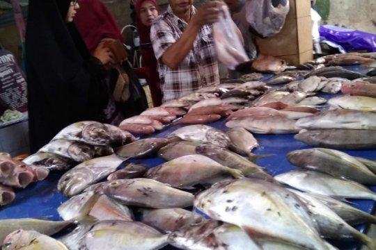 Harga ikan di pelelangan Makassar cenderung turun di tengah pandemi