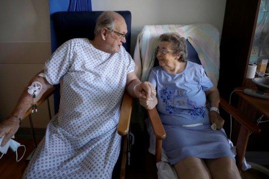 Protein plasma darah pasien COVID-19 dapat prediksi kondisi pasien