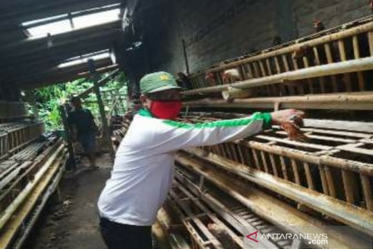 Bupati Kulon Progo pastikan stok pangan aman hingga Desember